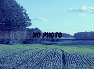 No_photo